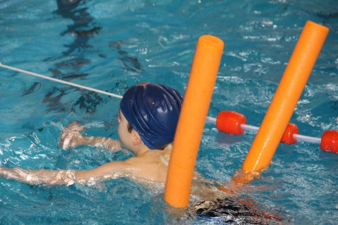 swim-619074