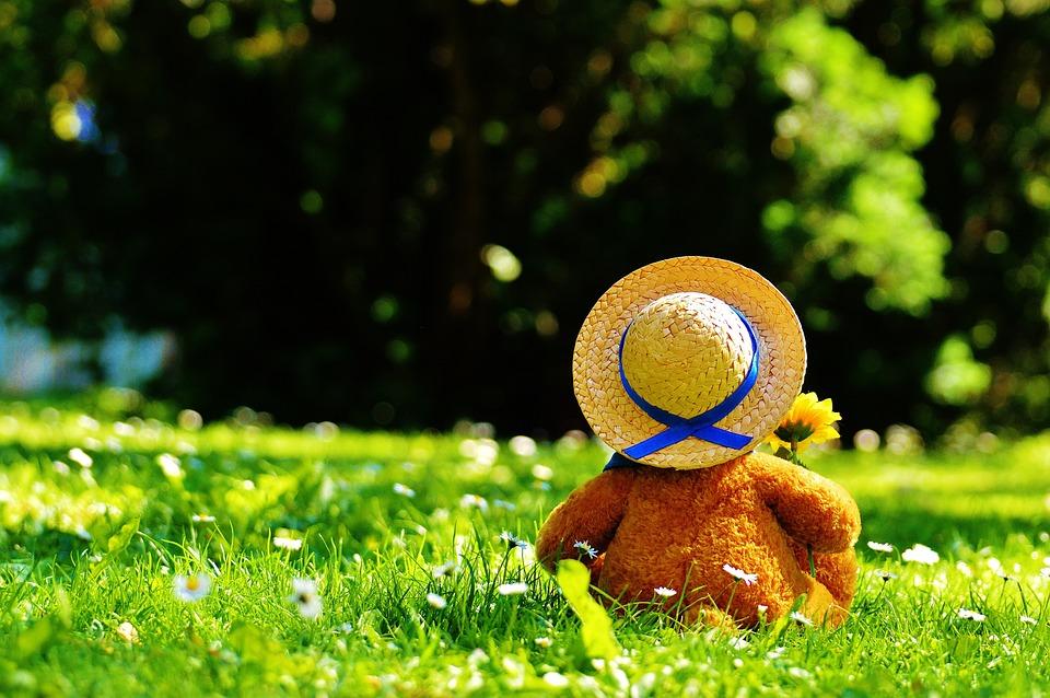 Bear Stuffed Animal Cute Bears Teddy Bear Teddy